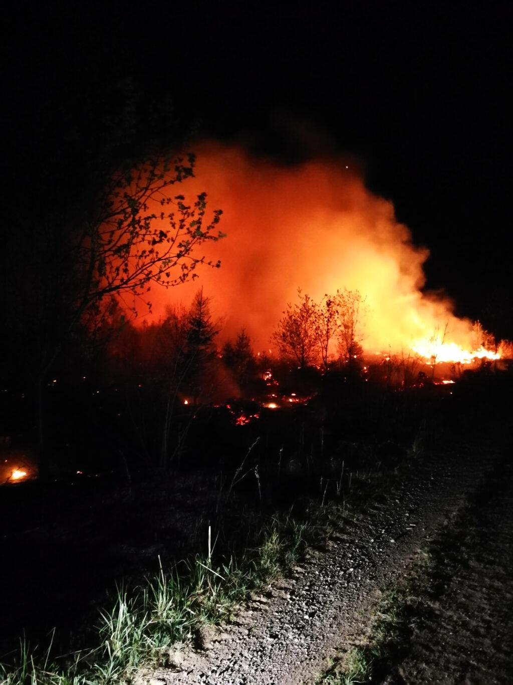 Waldbrand Rothemühle