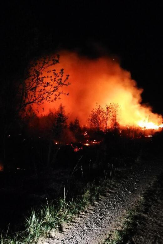 Waldbrand Rothemühle - Freiwillige Feuerwehr Wenden